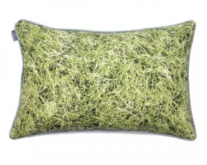 Decorative pillow  Grass (1)